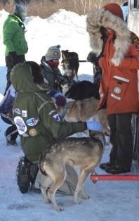 John Beargrease Volunteer Vets
