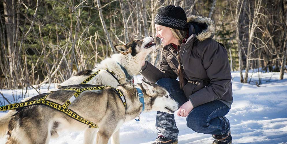 Duluth Women Model and Sled Dog Racer Amanda Vogel, Snomad Racing