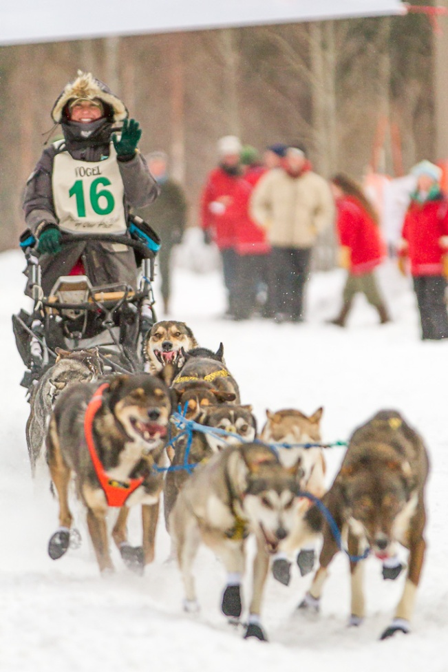 Gichigami Express Sled Dog Race 2014 Photo Credit: Nace Hagemann