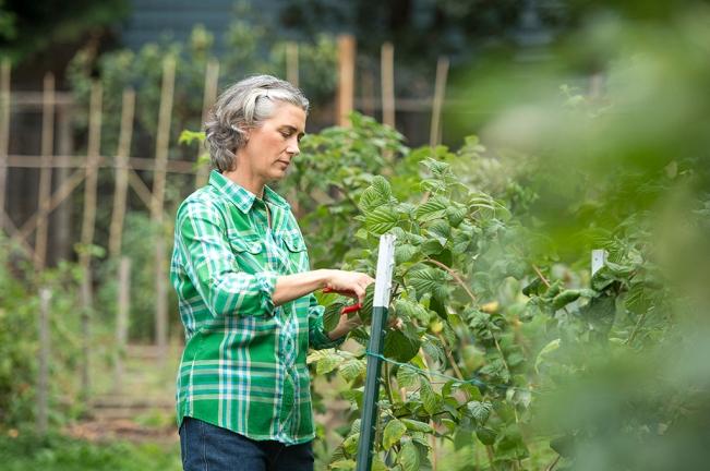 Garden Clothes: Crosscut Flannel Shirt
