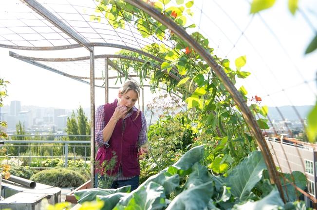 Urban Garden: Armachillo Shirt & Lightweight Utility Gardening Vest