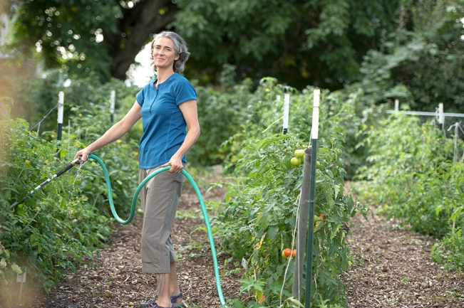 Urban Garden: Heirloom Garden Capri Pants