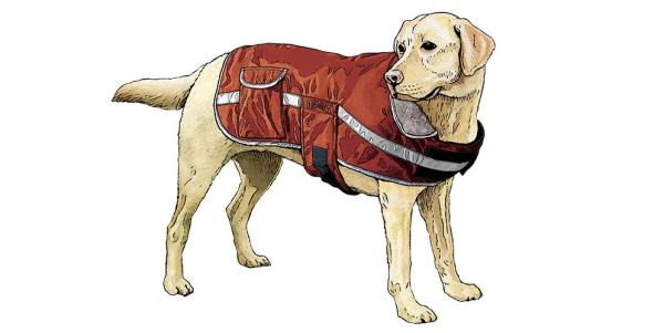 Dog Grab Jacket